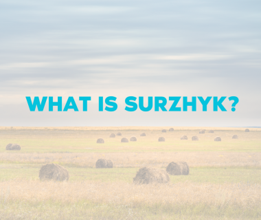 What is Surzhyk?