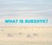 What is Surzhyk